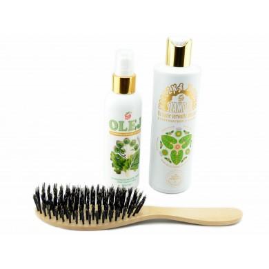 Regeneracyjna kuracja do włosów (szczotka + szampon + olej z łopianu)